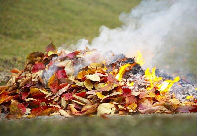 Уборка сада и сжигание мусора