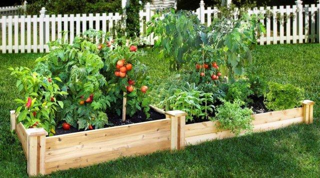 Красивые грядки своими руками: 50 идей, как украсить огород Сад и огород,ландшафтный дизайн