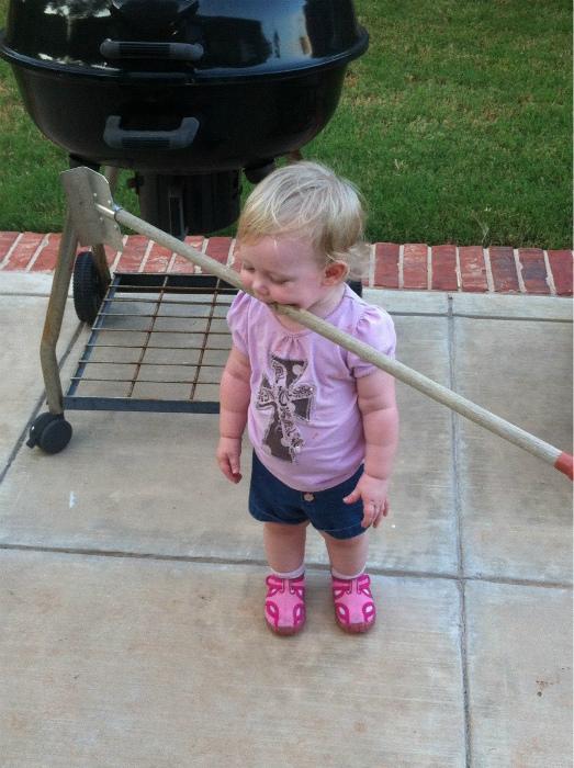 Сказала, что она собачка и будет играть с палочкой.   Фото: pixmafia.com.