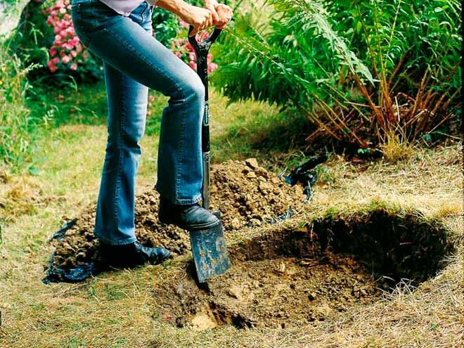 копает яму