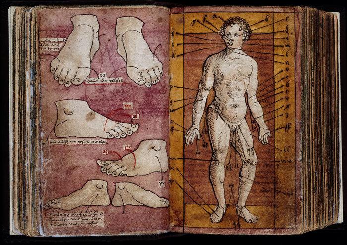 Иллюстрация из справочника по практической медицине. Германия, XVI век.