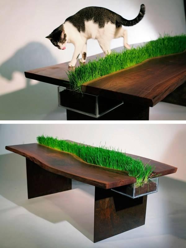 Стол со вставленным растением