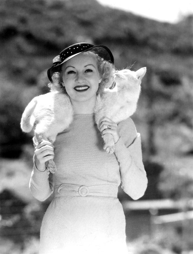 Знаменитые любители кошек: известные личности и их питомцы