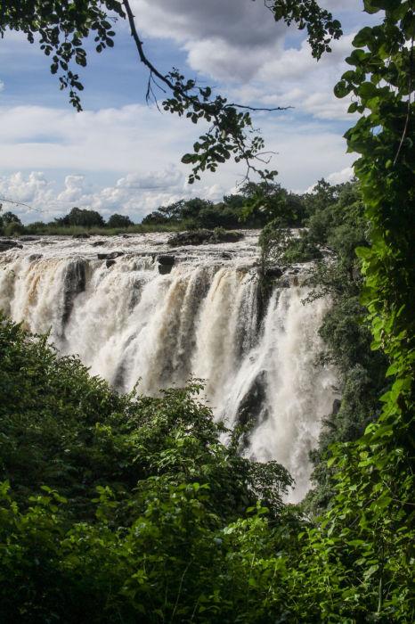 Потоки шумящего водопада стремительно падают вниз.