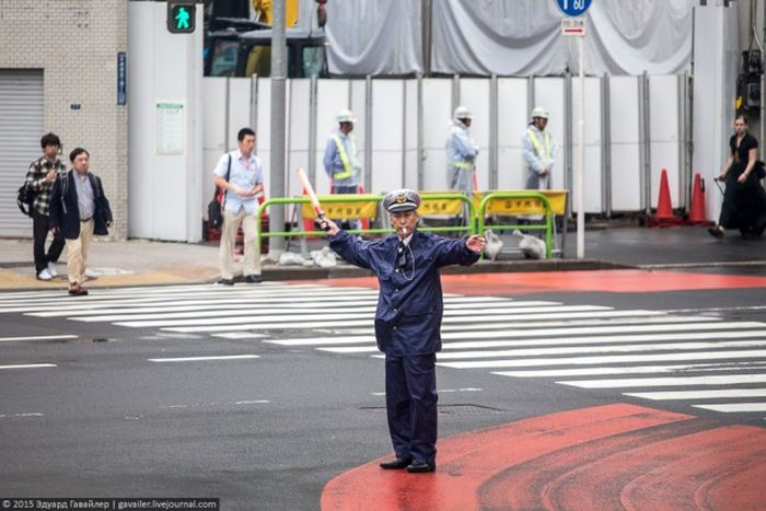 Необычная жизнь японцев общество, страны, факты, япония