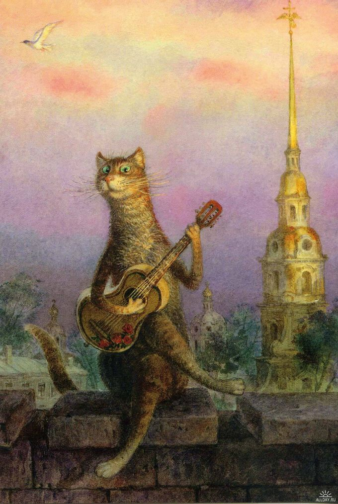 Фото петербургские коты