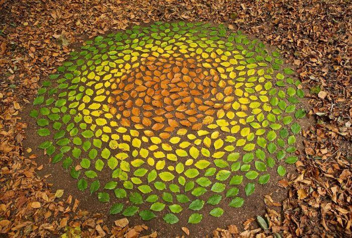 При создании своих шедевров британский художник использует все, что найдет под ногами – листья, камни и ветки.