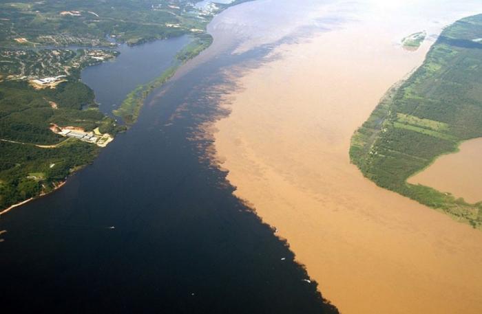 Воды Амазонки, попадая в океан, на несколько тысяч километров его опресняют / Фото: ngorod.net