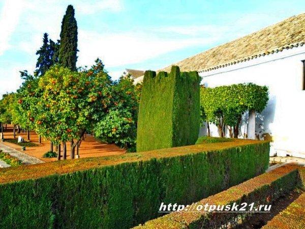 Замок Алькасар, дворец Алькасар