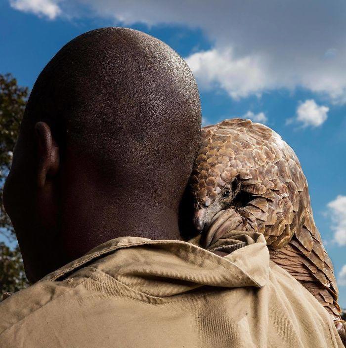 National Geographic выбрал лучшие фотографии в Инстаграме, вот 25 впечатляющих снимков