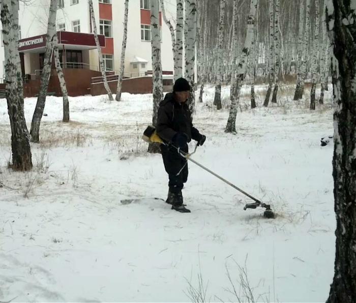 Выпал снег! Пора косить траву! | Фото: Fishki.