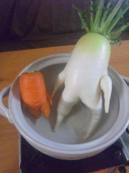 FunnyShaped06 Вальяжная редька и другие фрукты овощи, забывшие, что они растения