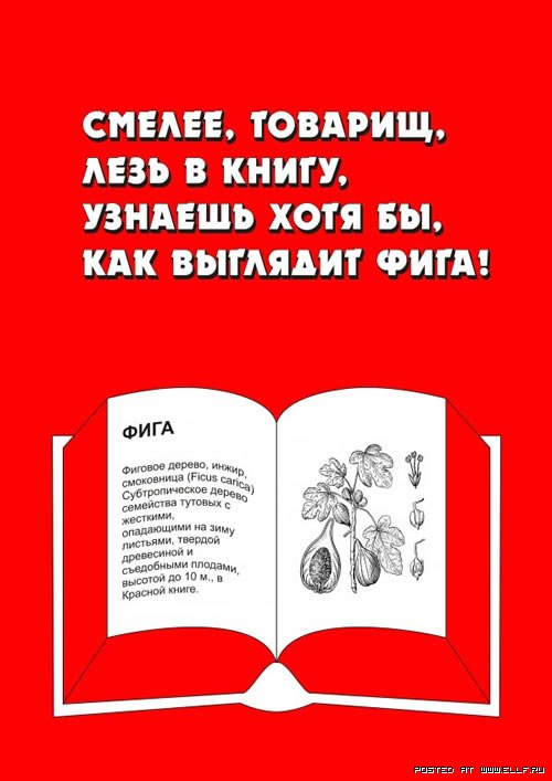 Отличная социальная реклама про книги и чтение (37 фото)