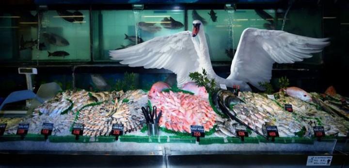 CuriousAnimals04 Животные в супермаркете