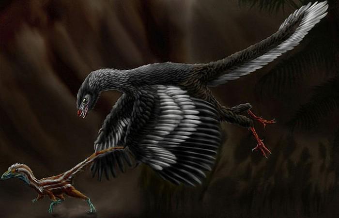 Самая древняя птица - протоавис.