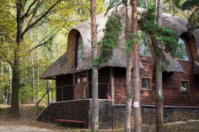 houseinwood14 Самые красивые дома в лесу
