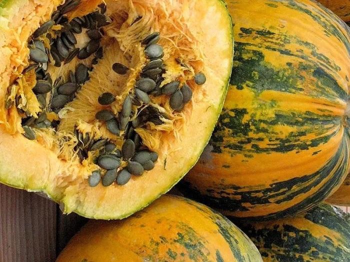 Просто засыпаем землей и выращиваем. /Фото: ireland.apollo.olxcdn.com