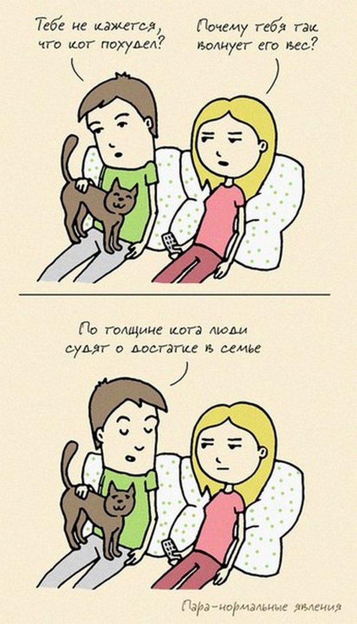 Прикольные картинки семейную жизнь, смешные