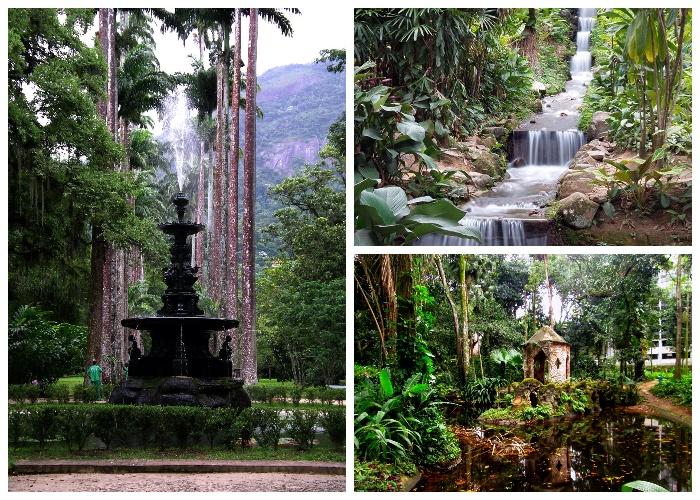 Один из старейших ботанических садов мира (Rio de Janeiro Botanical Garden). | Фото: ru.wikipedia.org.