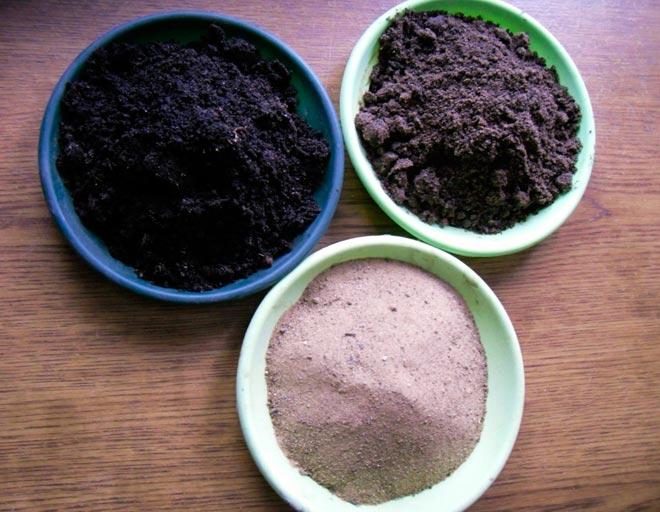 почва для каланхоэ