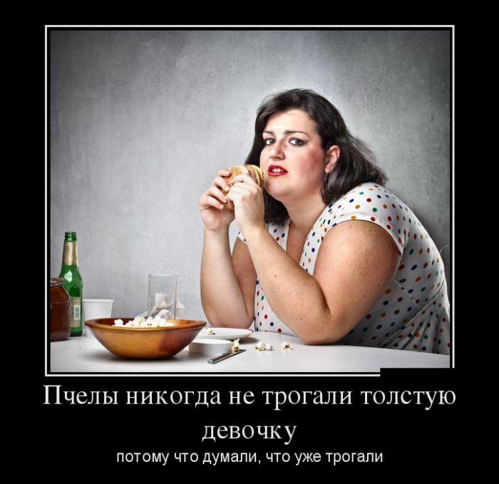 сети толстые мужики демотиваторы только