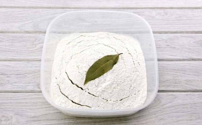От муки пищевую моль отпугнет лавровый лист