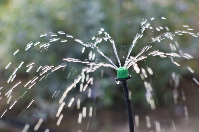 Дождевание сада