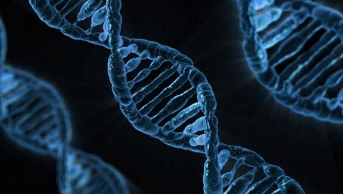 Научное открытие: CRISPR.