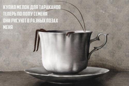 Stishki-Poroshki-12