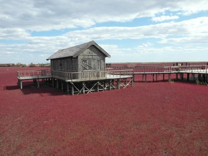 Этот пляж получил свое название из-за ярко-красного цвета морских водорослей.