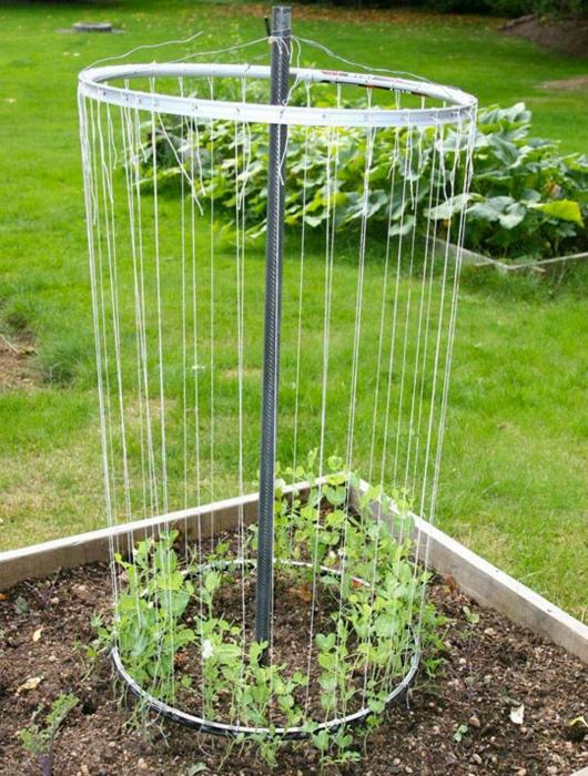 Цилиндрическая опора для растений.