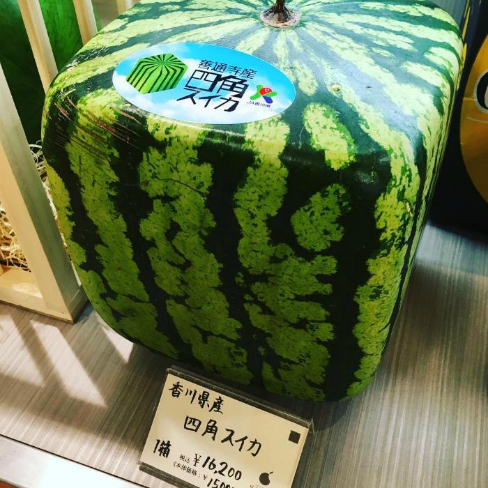 Фрукты и овощи необычных форм. | Фото: tsunagu Japan.