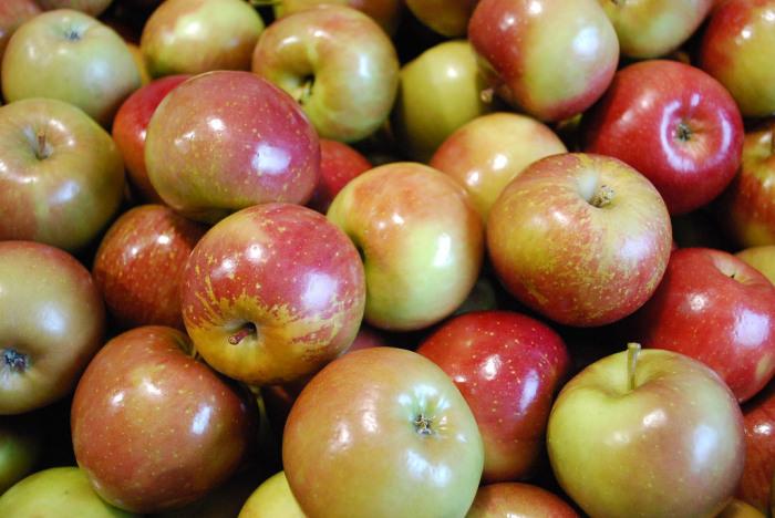 Вощение яблок не наносит вреда здоровью. /Фото: blog.brothersallnatural.com