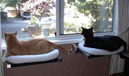 Спальня для любимой кошки: 10 милых идей фото 8