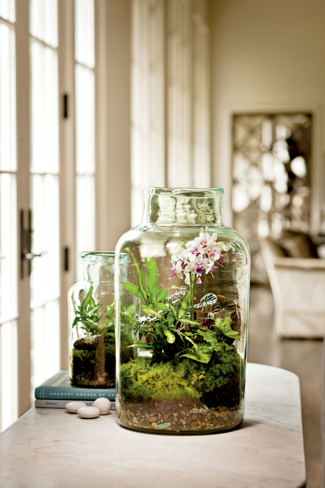 Опытные цветоводы могут позволить себе оформить орхидею в композицию в небольшом флорариуме, подобрав прозрачную стеклянную банку соответствующего размера
