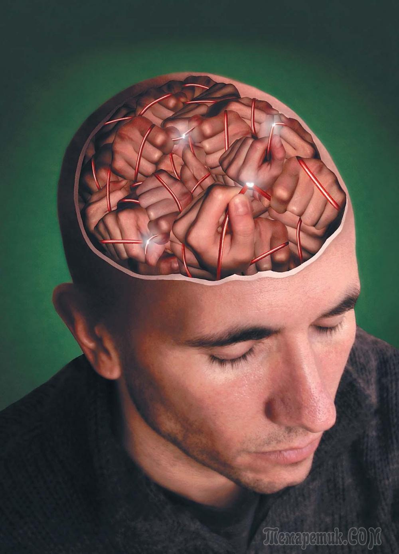 Чувствую мозг в голове