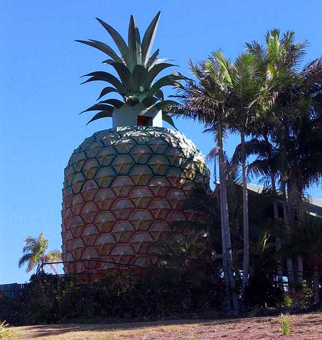 Большой ананас (Намбур, Квинсленд)