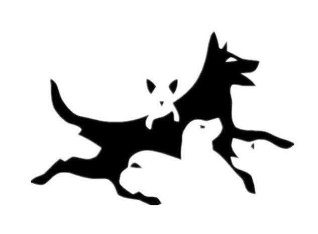 Сколько собак вы видите на картинке? Тест, который определит ваш психологический возраст
