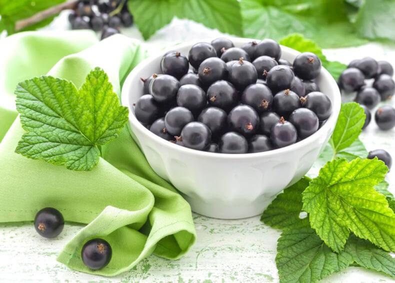 как сделать правильное питание образом жизни