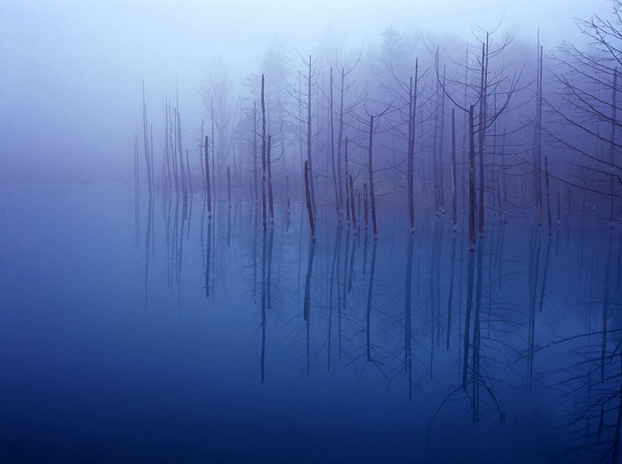 Голубой пруд Биэй в Японии в тумане. Красивое фото