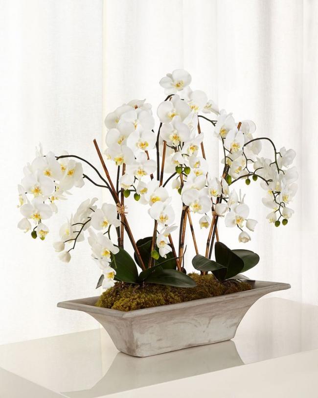 Нежный горшок для орхидеи из натурального светлого дерева, нейтрального оттенка подойдет для цветов любого цвета