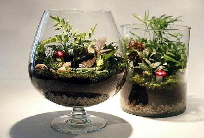 Красивейшие флорариумы в больших стеклянных бокалах.