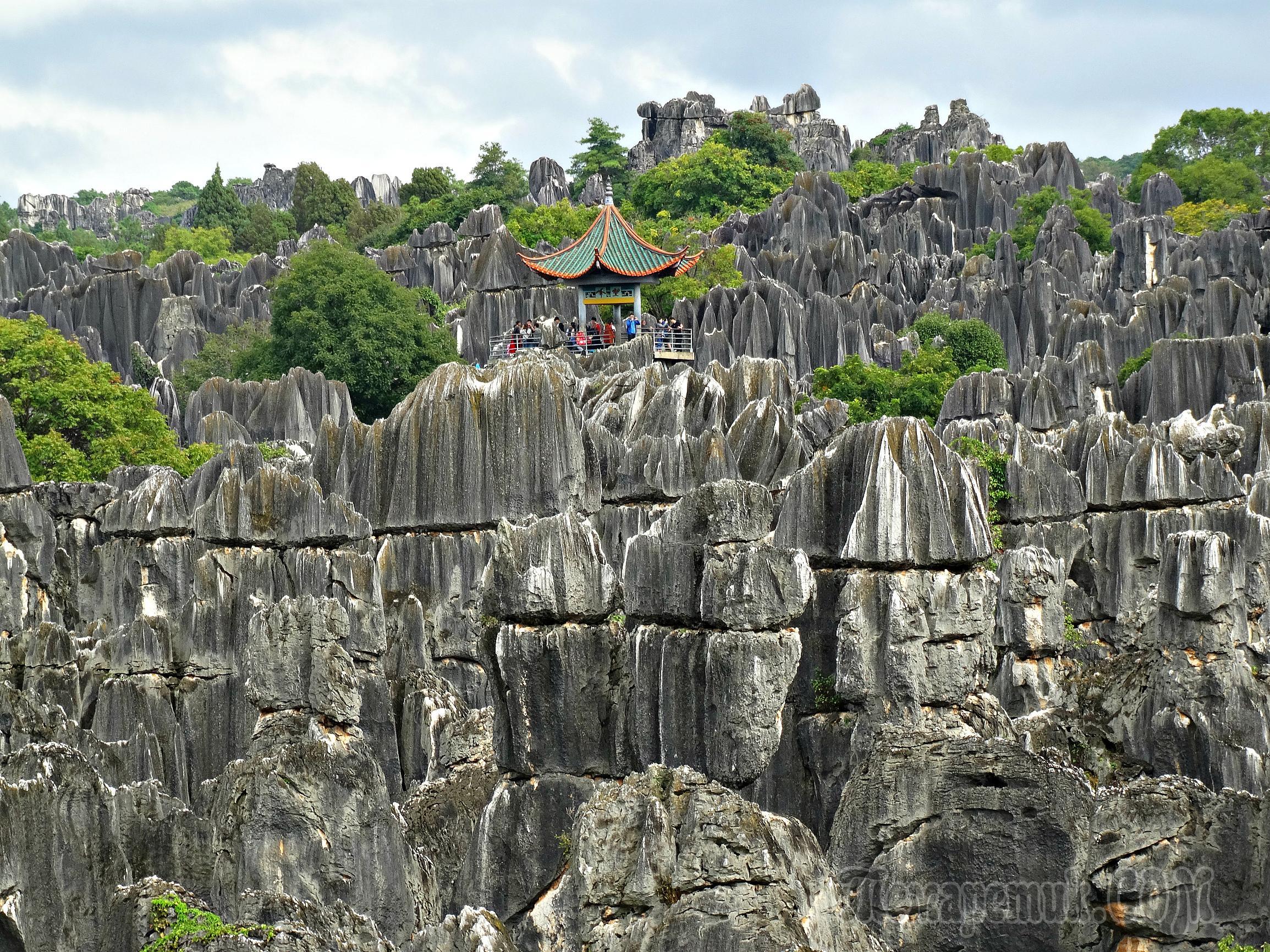 разнообразная каменный лес фото китай никто них возьмет