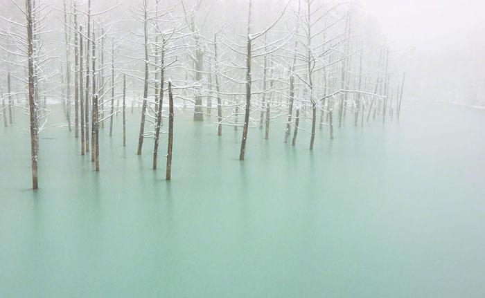 Замерзший пруд.