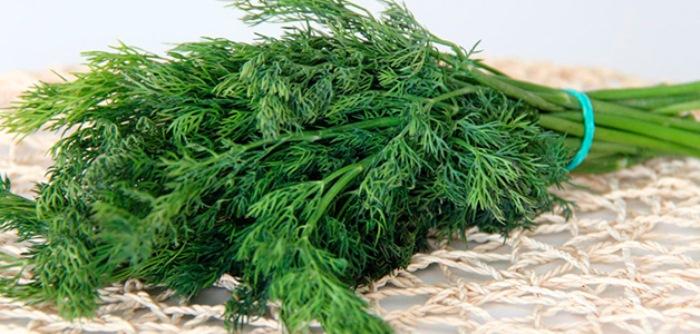 Максимум нитратов - в стеблях зелени.