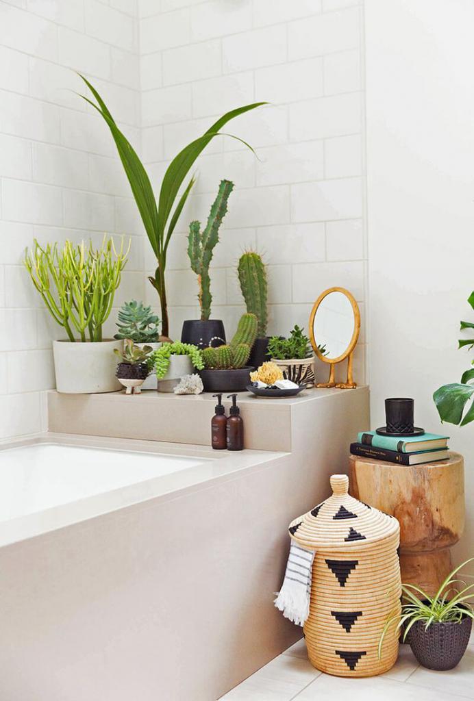 правильное расположение растений