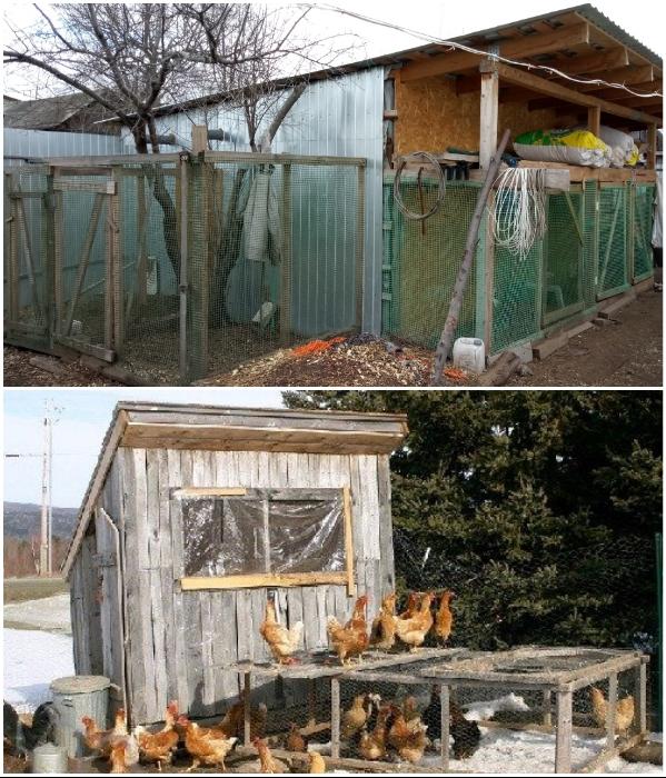 Зачастую курятники выглядят не очень привлекательно. | Фото: mchick.ru/ kuryatnik.info.