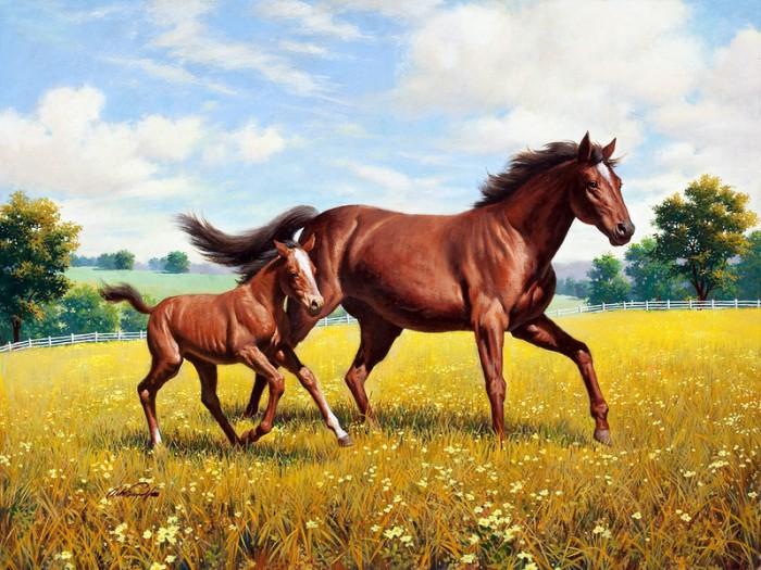 лошади художник Bonnie Marris - 09
