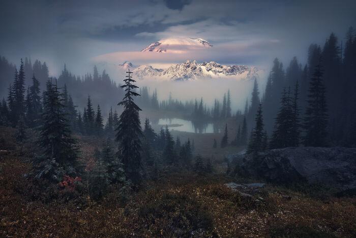 Прекрасное небо и сказочно красивый лес.