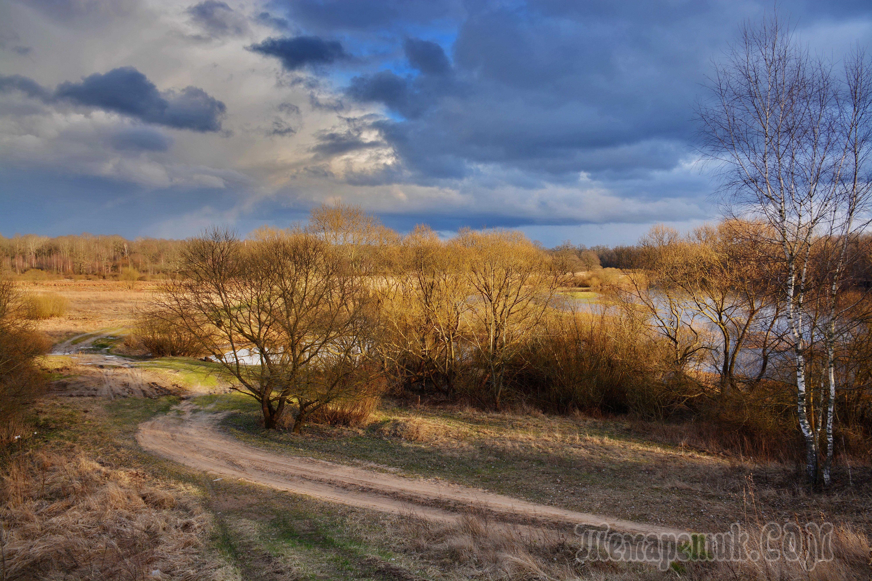 драгоценных фото белорусская природа весной такая непосредственная